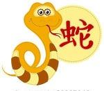 Feng Shui 2015 for Snake