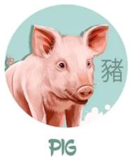 Feng Shui 2019 for Boar