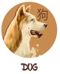 Feng Shui 2019 for Dog