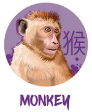 Feng Shui 2019 for Monkey