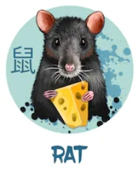 Feng Shui 2019 for Rat