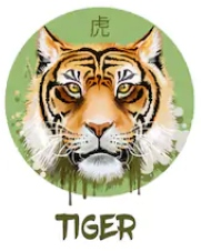 Feng Shui 2019 for Tiger
