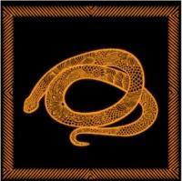 Feng Shui 2020 for Snake